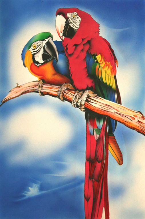 Parrots (2004) - big